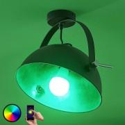 LED ceiling light Muriel, 1-bulb, WiFi black/sil