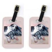 Caroline's Treasures 7164BT Pair of 2 Harlequin and Bule Natural Great Danes Luggage Tag(Multicolor)