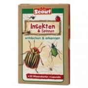 Scout Lernkarten Insekten Verschiedene I