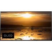 Televizor OLED 139cm Sony KD55A1B 4K UHD Smart TV