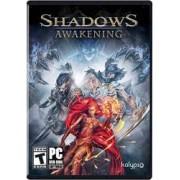 Joc Shadows Awakening Pc