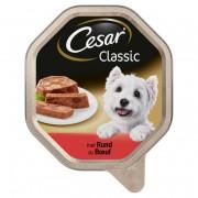 Cesar Classic met rund