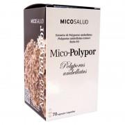 Mico-Polypor - Polyporus umbellatus - Bio - 70 gélules - 620 mg