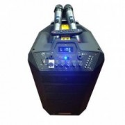 Boxa cu Statie Activa tip Troller PARTY SOUND 2 Microfoane Wireless Telecomanda Cititor Stick Card SD FM Radio Bluetooth
