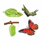 Ciclul de viata Fluturele Monarh - Set 4 figurine