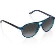 Gant Wayfarer Sunglasses(Black)