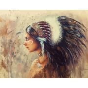 Gaira Malování podle čísel Indiánská žena M992127