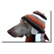 Tablou Canvas Funny Dog