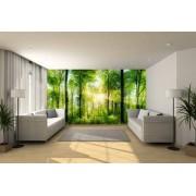 Fotobehang expositie kwaliteit 220x450 cm