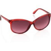 Fastrack Oval Sunglasses(Violet)