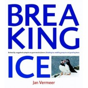 Boek Breaking Ice - Jan Vermeer