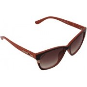 Eccellente Cat-eye Sunglasses(Brown)