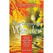 Four Degrees of Wonder: Exploring the Many Wonder-Filled Ways God Breaks Into Our Lives, Paperback