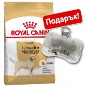 Royal Canin Breed + светещ медальон Safety Light подарък! - Sterilised Labrador Retriever Adult (12 кг)