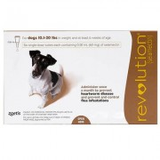 Revolution (Brown) - Small Dogs 10.1-20 lbs 6 Doses