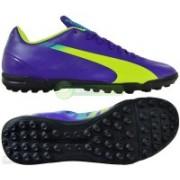 Puma evoSPEED 5.3 TT Running Shoes(Blue)