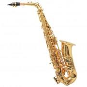 vidaXL Алт саксофон, жълт месинг със златен лак, Еb