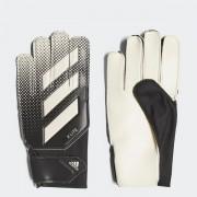 X Lite Adidas kapuskesztyű