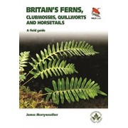 Britain's Ferns. A Field Guide to the Clubmosses, Quillworts, Horsetails and Ferns of Great Britain and Ireland, Paperback/James Merryweather