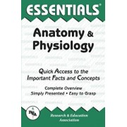 Anatomy and Physiology Essentials, Paperback/Jay M. Templin
