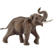 Figurina Asian Elephant, Schleich, Maro