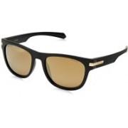 Polaroid Wayfarer Sunglasses(Brown, Golden)