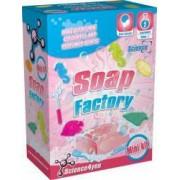 Fabrica de sapunuri parfumate -Mini