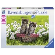 PUZZLE 14Ani+ PISICUTE IN COSULET, 1000 PIESE