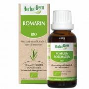 HerbalGem Rosmarin Bio