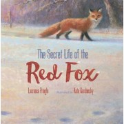 The Secret Life of the Red Fox, Hardcover