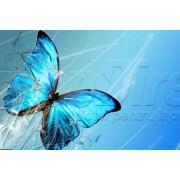 Laptop Skin Butterfly 029