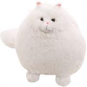 Futaba Fluffy Persian Cat Pembroke Pillow Soft Toy - 30 Cm