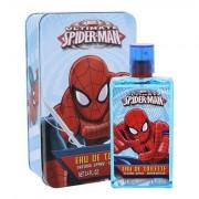 Marvel Ultimate Spiderman confezione regalo Eau de Toilette 100 ml + scatola di metallo per bambini