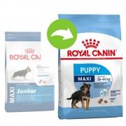 Royal Canin Size 15kg Maxi Junior Royal Canin valpfoder
