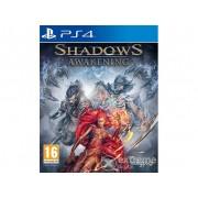 Joc Shadows: Awakening PS4