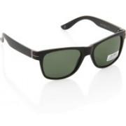 Joe Black Wayfarer Sunglasses(Green)