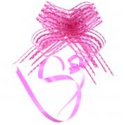 Fundita roz cu buline