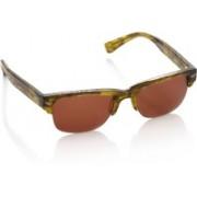 Superdry Rectangular Sunglasses(Brown)