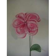 Fiore Bianco Rosa Doppio Petalo