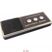 Car Kit Bluetooth Parasolar Zenteko SMKP100 + CAR Triple, Car Holder