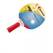 Paleta tenis outdoor 4Seasons