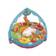 Centru de joaca si activitati bebe - Ferma
