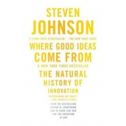 Where Good Ideas Come from: The Natural History of Innovation, Paperback