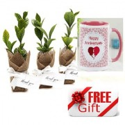 ES Bomboniere Gift Plant NATURAL With Gift Anniversary Gift Mug