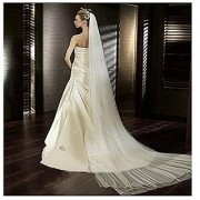 Soft Tulle Wedding Veil for Bride Lady 2 Layers 3 Meters Long Cathedral Chapel Floor Veils Embroidered Lace Trim Hair Si