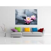 Tablou flori de Lotus roz inflorit pe iaz - cod W10