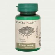 DACIA PLANT BRANCA URSULUI 60 comprimate
