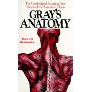 Gray's Anatomy, Paperback