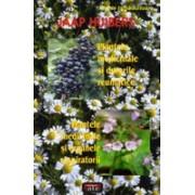 Plantele medicinale si durerile reumatice • Plantele medicinale si organele respiratorii.