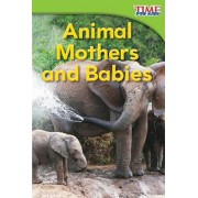 Animal Mothers and Babies, Paperback